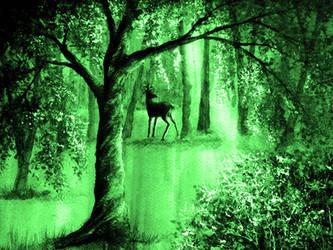 Emerald Forest by AnnMarieBone