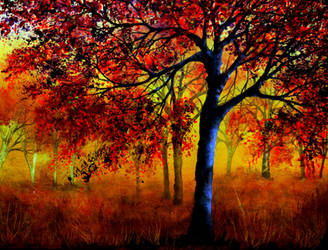 Autumn Fire by AnnMarieBone