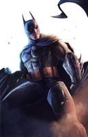Batman: White Series by pinkhavok