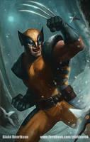 Wolverine by pinkhavok