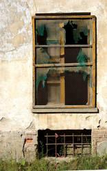 Broken window by d1s4st3r