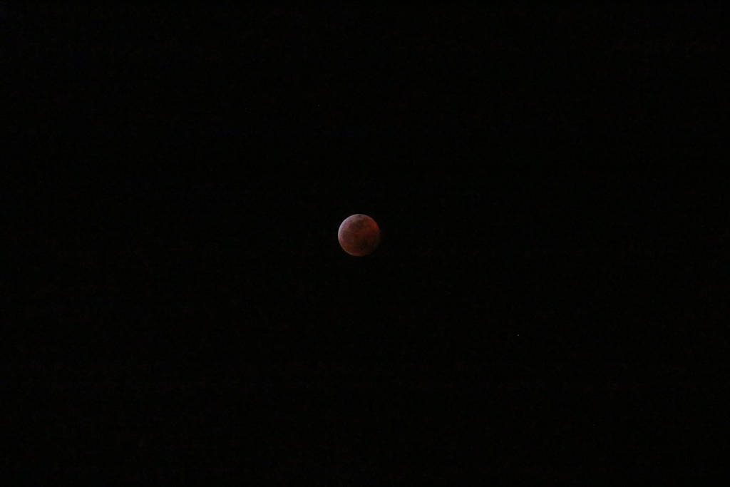 Super Wolf Blood Moon Eclipse 7 by Orcanaria