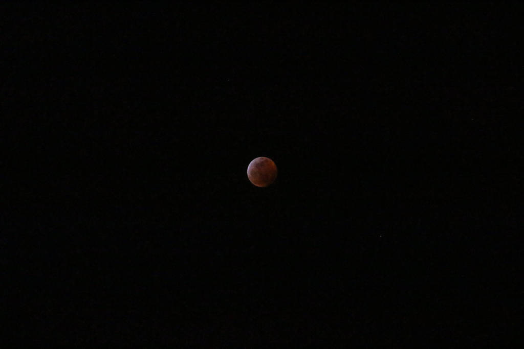 Super Wolf Blood Moon Eclipse 8 by Orcanaria