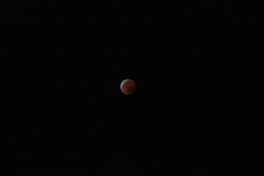 Super Wolf Blood Moon Eclipse 9 by Orcanaria