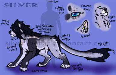 -Ref Sheet: Silver 2018- by SilverSheCat