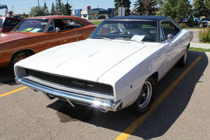 Stunning White Charger by KyleAndTheClassics