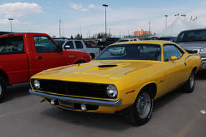 Oh, Yellow 'Cuda by KyleAndTheClassics