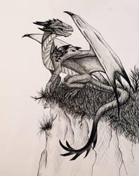 Dragon pen drawing by AeroLynz