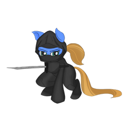 Ninjagirl pony by lookup4napkins
