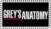Grey's Anatomy 2 by Roojii