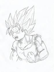 Son Goku by phlk