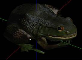 Giant Bullfrog by Berandas