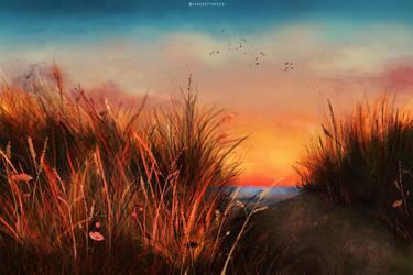 Sunny day by LadyDattebayo