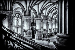 City Hall Hamburg VI by calimer00