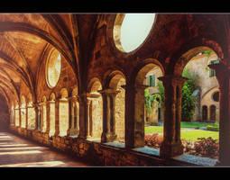Abbaye de Valmagne 3 by calimer00