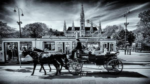 Vienna 43 by calimer00