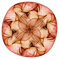 Hopi Shield by rosshilbert