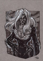 Black Cat by DenisM79