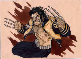 Wolverine- year2004 by DenisM79