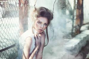 Papilio in Mist by RavenaJuly