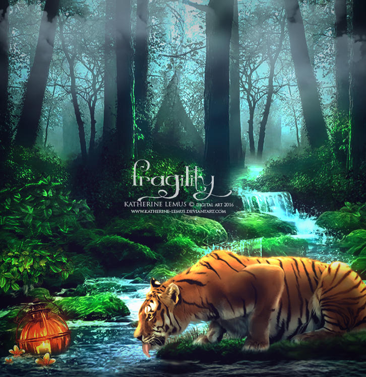 Fragility by katherine-lemus