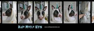 Blue Merle Kirin (corgi/unicorn/koi) by stuffedpanda-cosplay