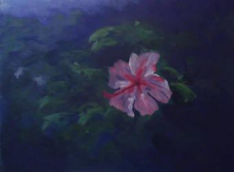 Flower Alcazar gardens by drwhofan