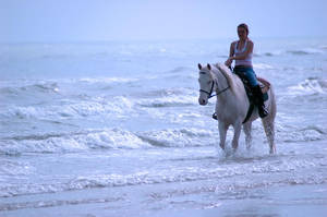 A Ride on the Beach by izabella-leah