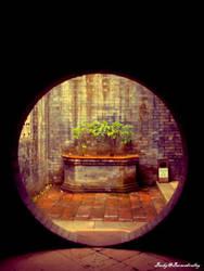 Round door by Beracahvalley
