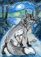 ACEO: Misty by SaQe