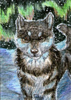 ACEO: Griandan by SaQe