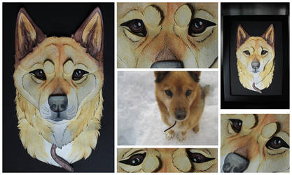 3D - Portraits: Jesse by SaQe