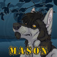 Commissions: Mason - icon by SaQe
