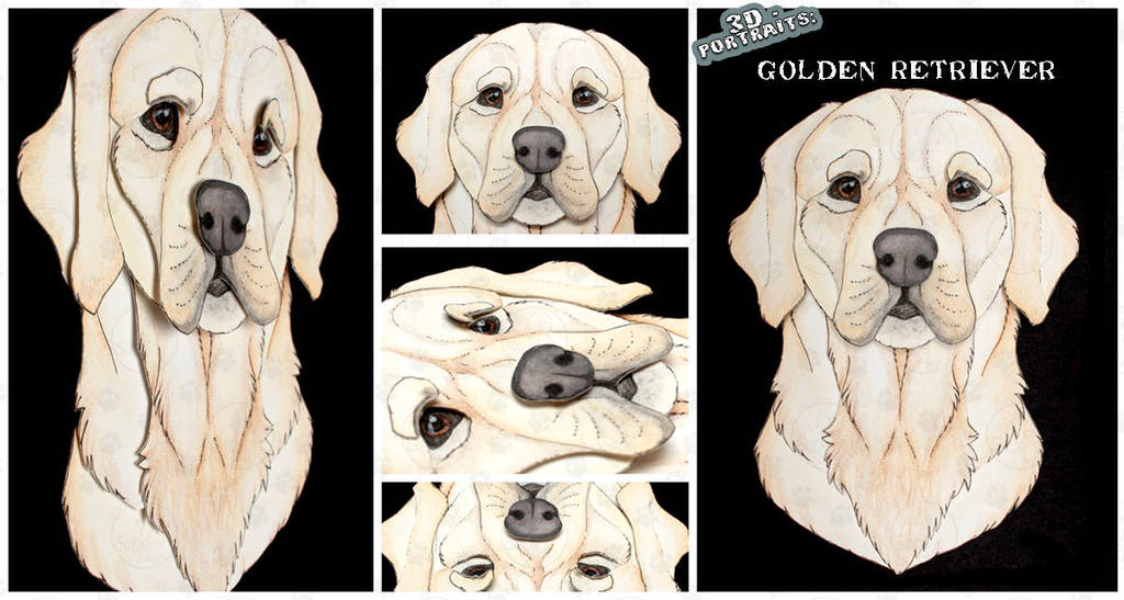3D - Portraits: Golden Retriever by SaQe