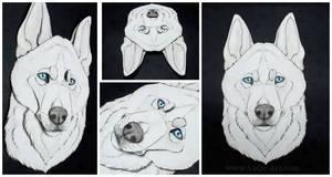 Commissions: 3D - Portrait - Tiuhti by SaQe