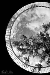 Spacemoon by Nightline