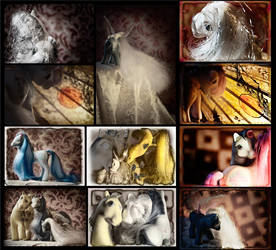 Ponies Photo Collage by xanadove