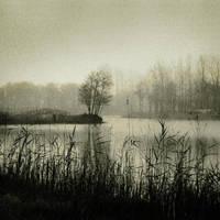 Open Fields of Silence by ABXeye