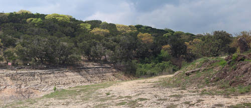 Dry Cut Medina Lake by Nolamom3507