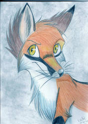 I see you by FigoFox