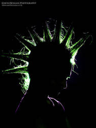 Mohican Silhouette by gdphotography