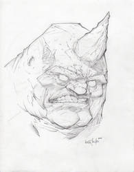 Rhino by ANDYTAYLOR-GARBAGE