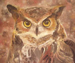 The Owl by OracleSaturn