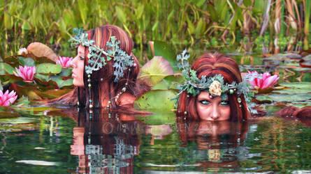 Sisters by IdaLarsenArt
