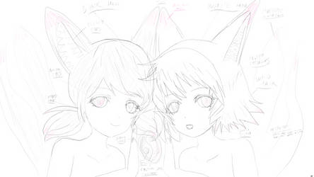 Concept art: Fox girl twins (Original characters) by Svinstvo
