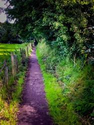 The Walkway by bulldogstoy