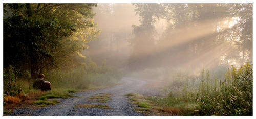 One Autumn Morning by Halgrim