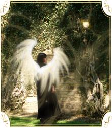 Garden Angel by lemonadeyellow