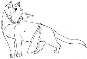 Hungary cat by nightwindwolf95