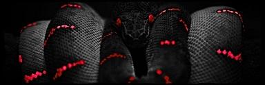 Black-wallpaper-4k by Fire-Ebony